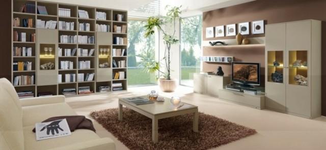 grande bibliothèque modulaire salon