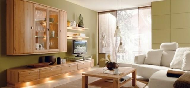murs vert clair salon contemporain bois
