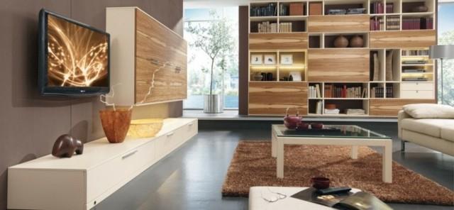salon moderne tapis bibliothèque originale