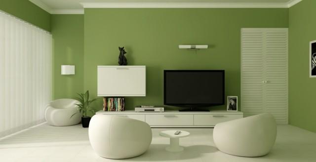 salon vert blanc design