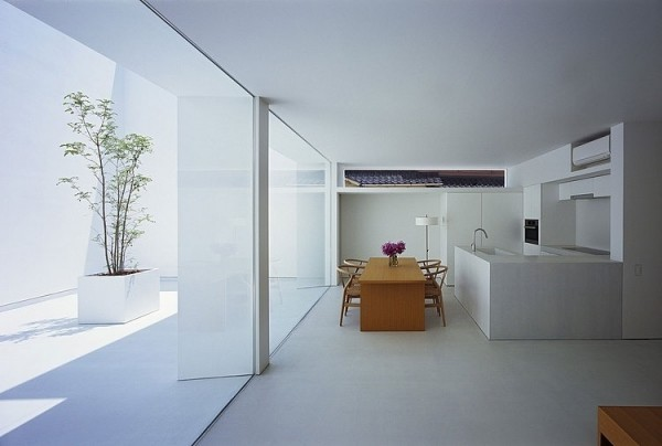 cuisine minimaliste blanche arbre
