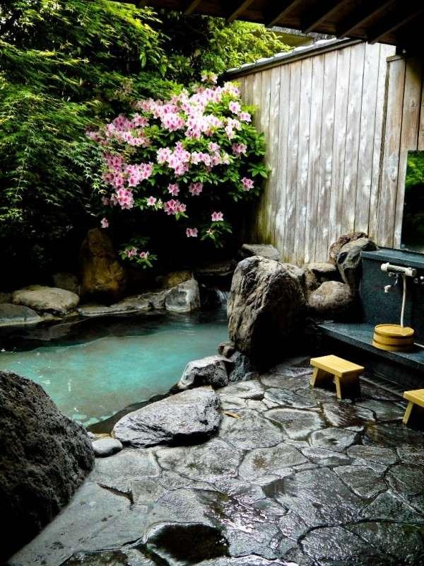 petit jardin alpestre zan