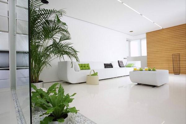 salle-séjour-couleurs-fraîches-intérieur-blanc-coussins-verts-plantes idées salle de séjour