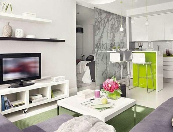 salon deco idee gris vert