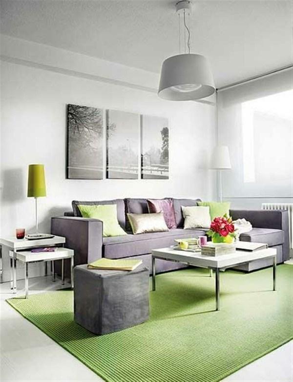 Salon Moderne Gris Vert Design