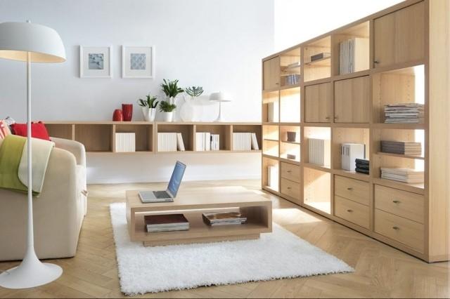 meubles-contemporains-idée-originale-bibliothèque-rangement
