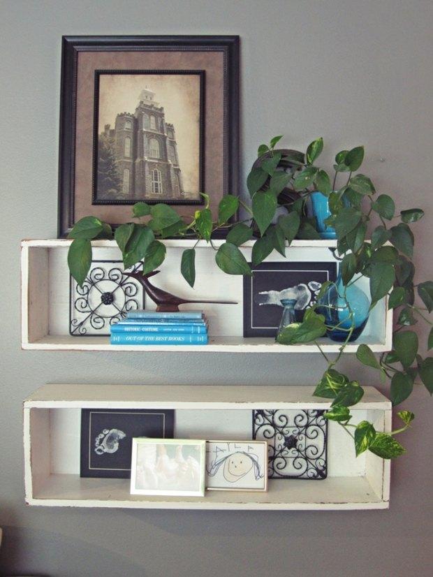 étagères murales rétro avec plante