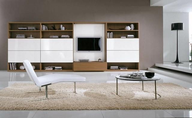 décoration salon design bois tapis