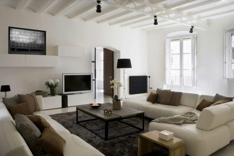 decoration salon moderne contemporain