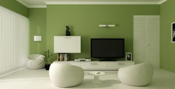 idée couleur salon blanc vert