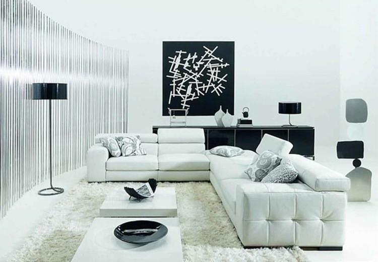 idee decoration salon noir blanc