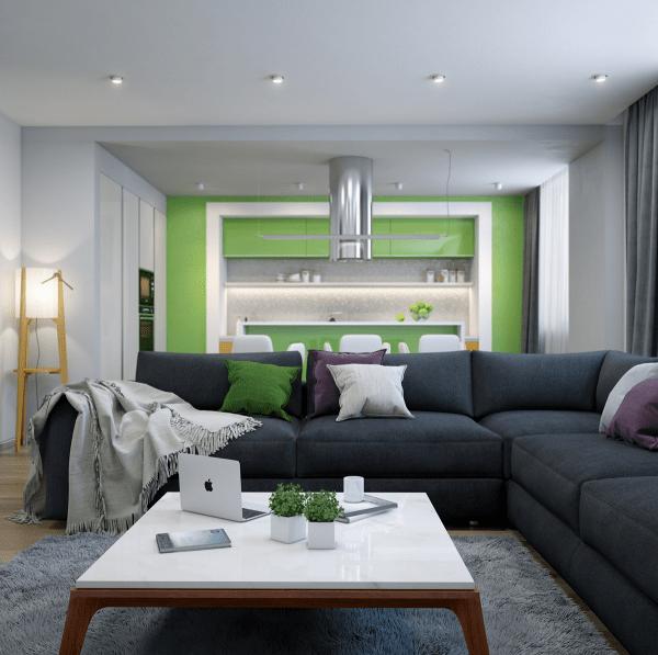 séjour moderne idée aménagement canapé noir table basse blanche cuisine verte