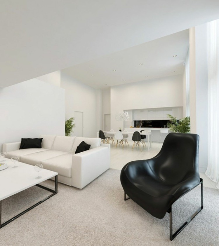salon noir et blanc contemporain