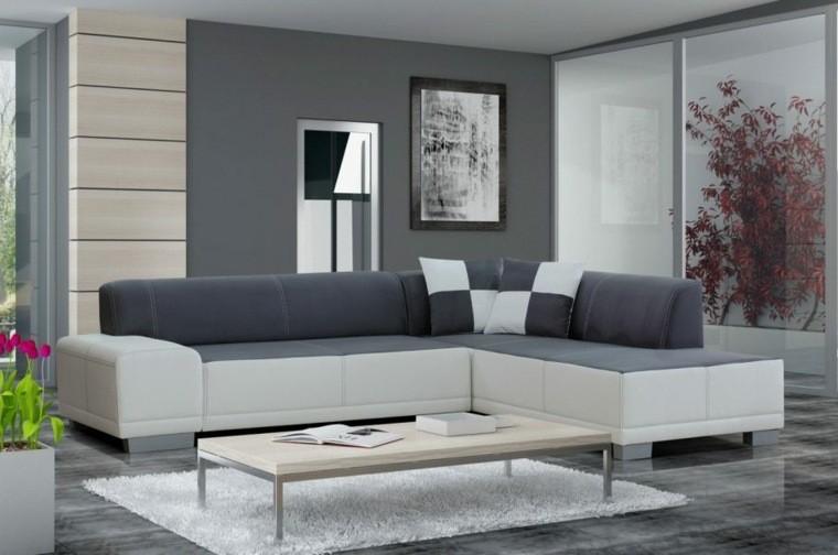 décorer salon moderne style minimaliste cadre plante tapis de sol blanc