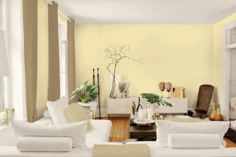 couleur murale peinture salon