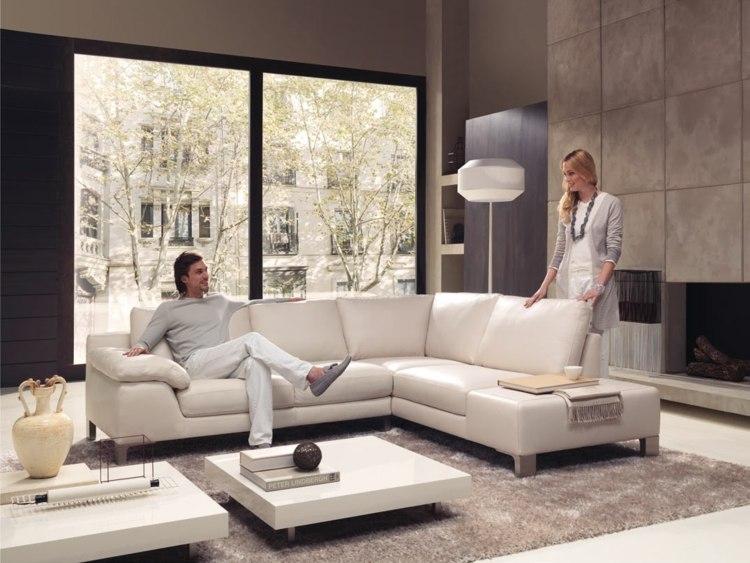 idée déco petit salon mobilier design