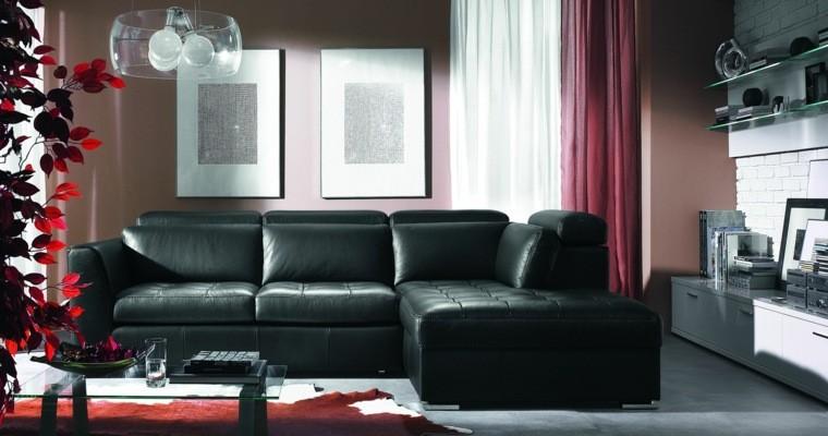 décoration intérieur salons couleur foncée