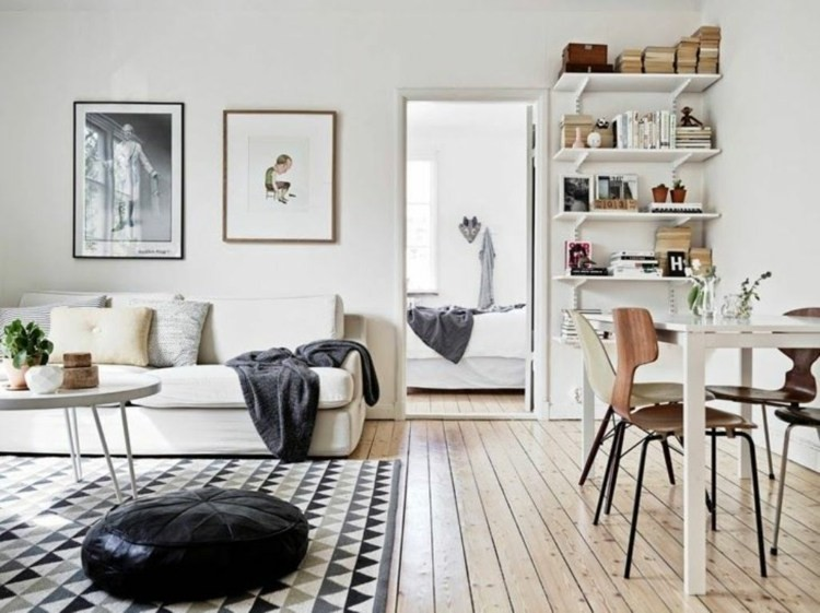 salon scandinave idee deco