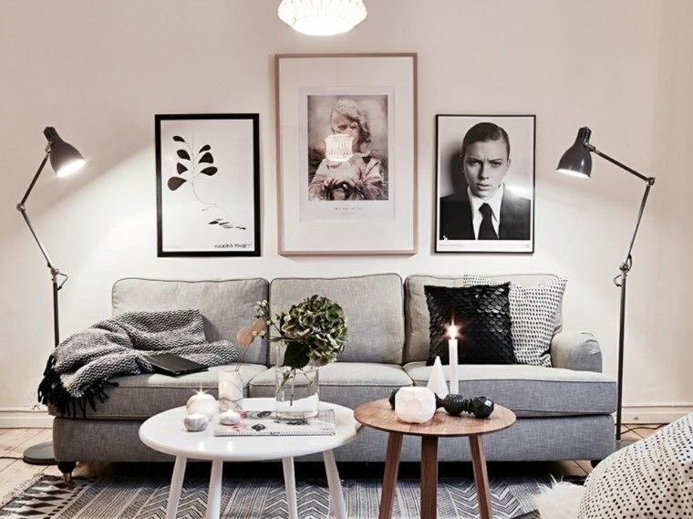 design interieurs salons scandinaves