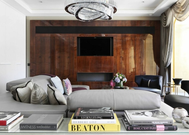 déco moderne canapes salon design cuir gris meuble bois tele