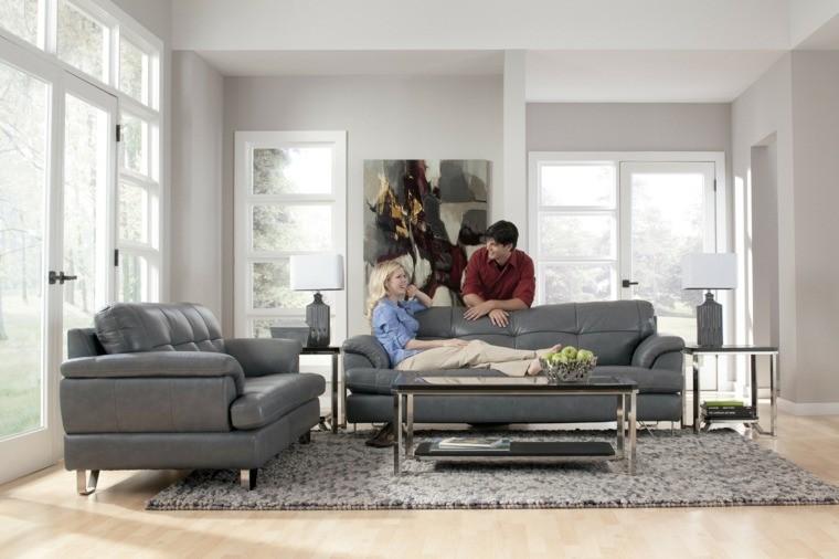 photos salons modernes canape cuir girs