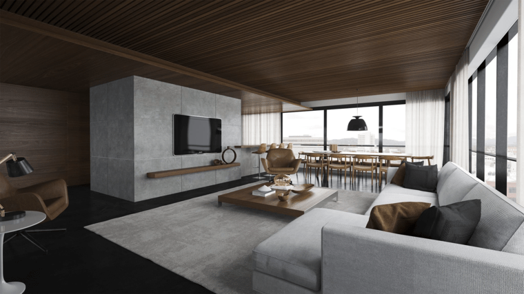 salon decor moderne canapes gris