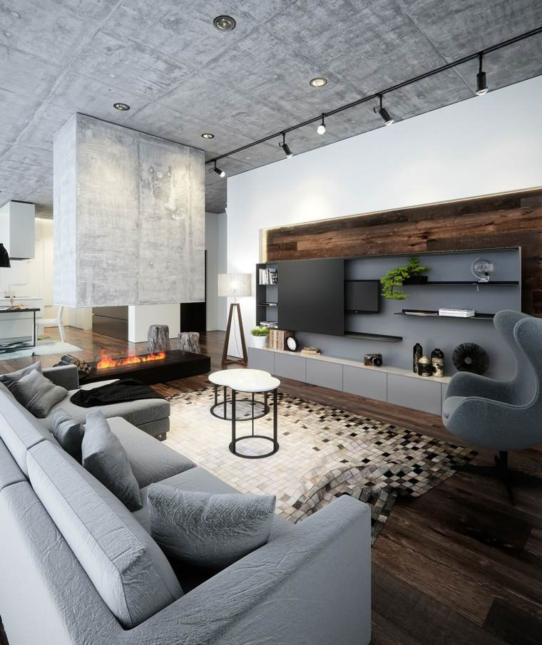 photo salon style moderne meubles gris