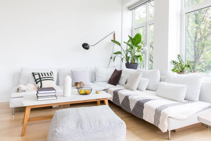 salon minimaliste avec plein de coussin