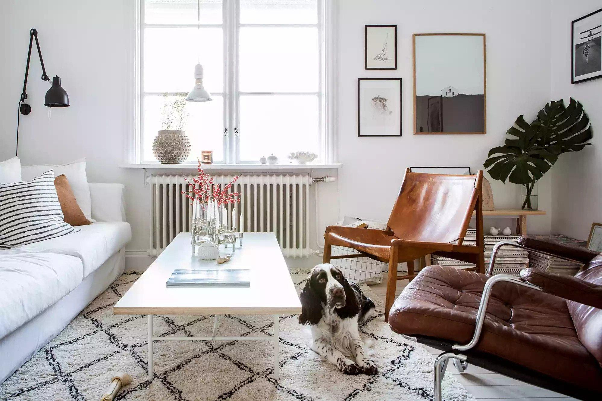 Chaises longues en cuir brun vintage dans un salon blanc moderne