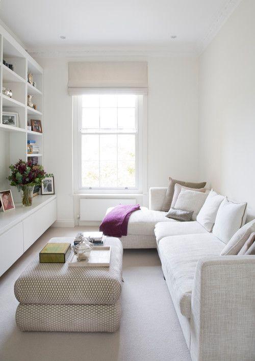 Plantes intérieures pour salon minimalistes